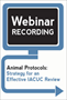 Animal Protocols: Strategy for an Effective IACUC Review (Recording)